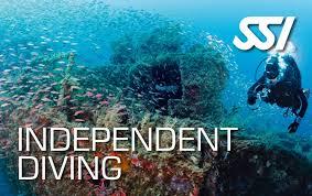 Independent Diver (Solo Diver)