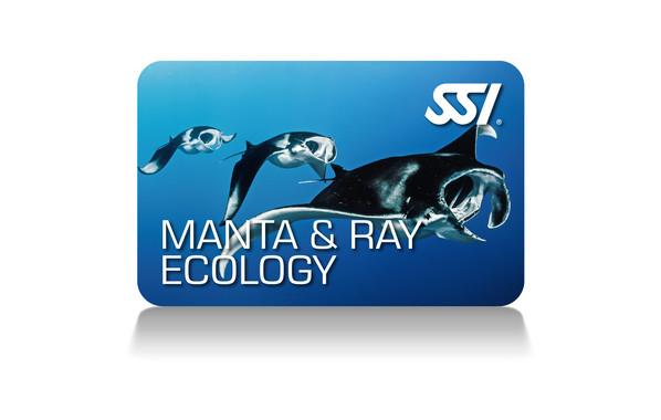 Manta & Ray Ecology
