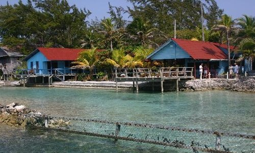 Open Water Referral