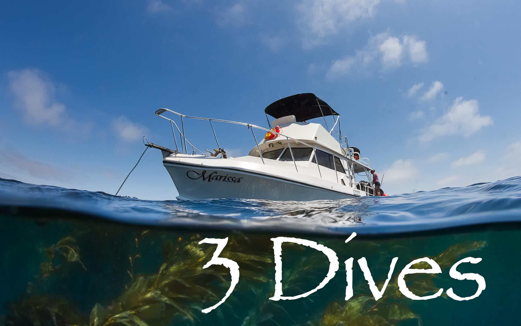 Marissa Charters - 3 Dives