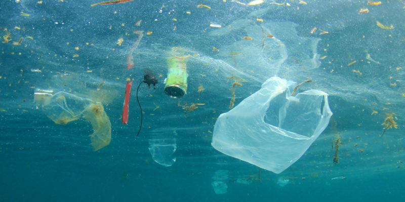 Dive Against Debris Specialty | Scuba Center Temecula
