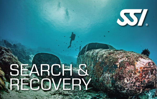 Search & Recovery -