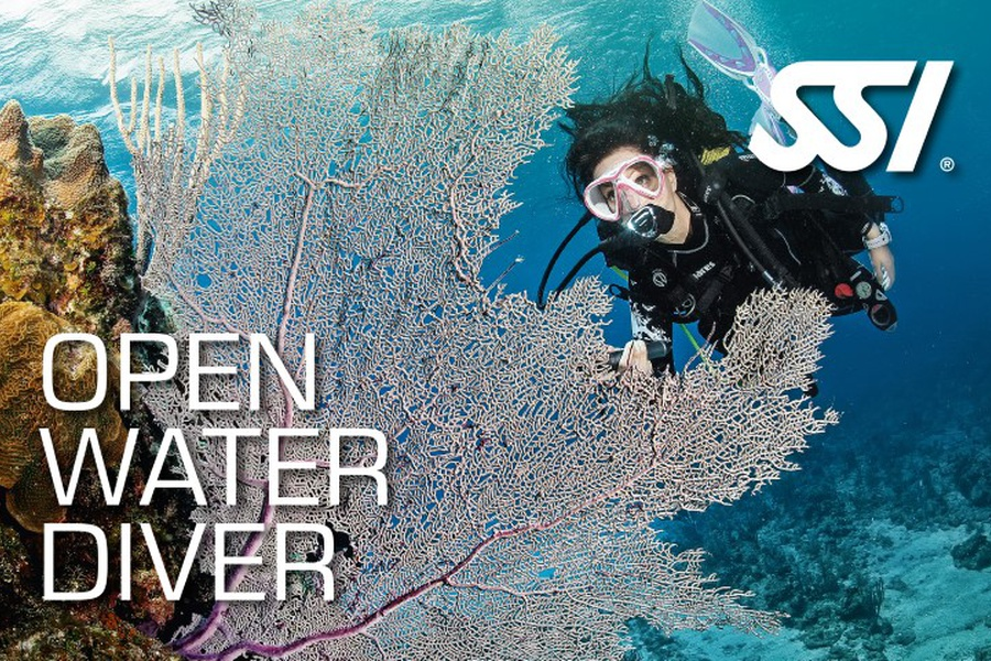 Open Water Diver Course -