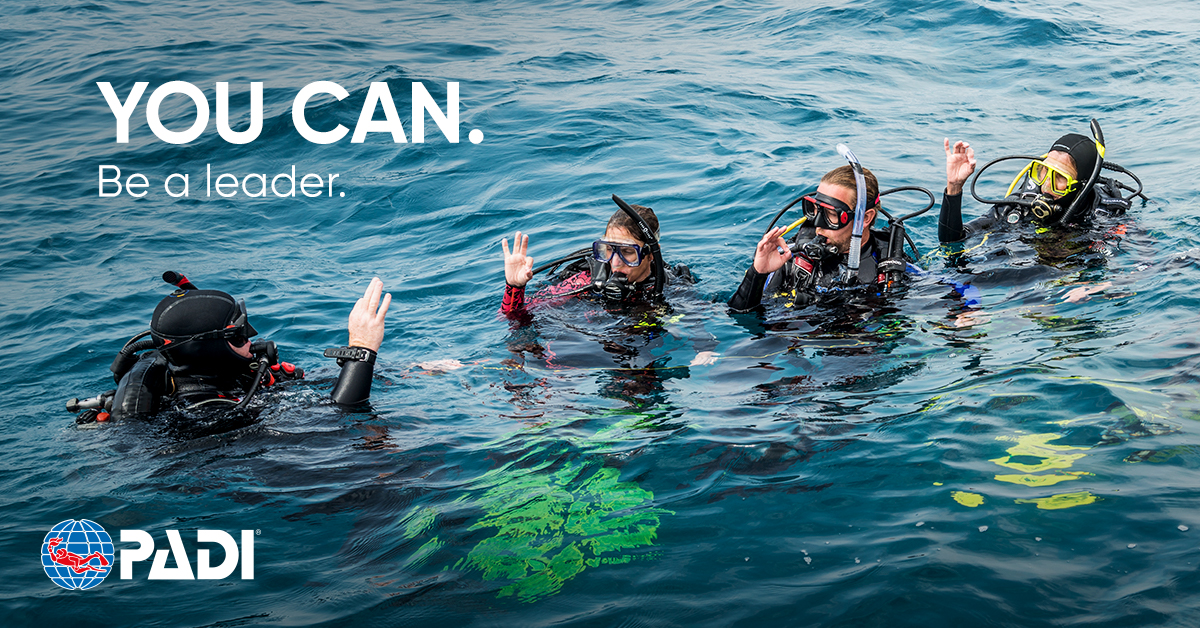 PADI ASSISTANT INSTRUCTOR   --