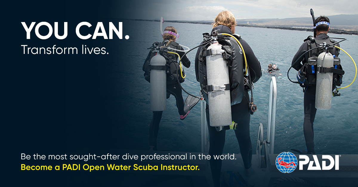 PADI OPEN WATER SCUBA INSTRUCTOR  --