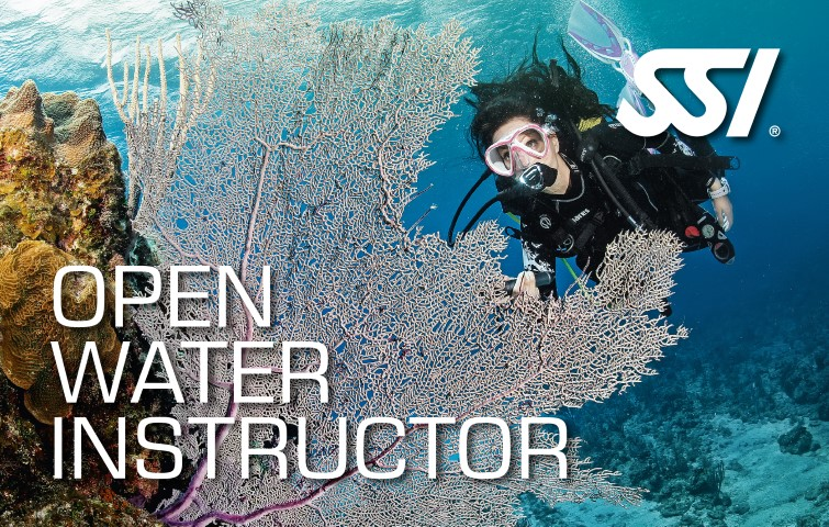 SSI Open Water Instructor Training Course Complete