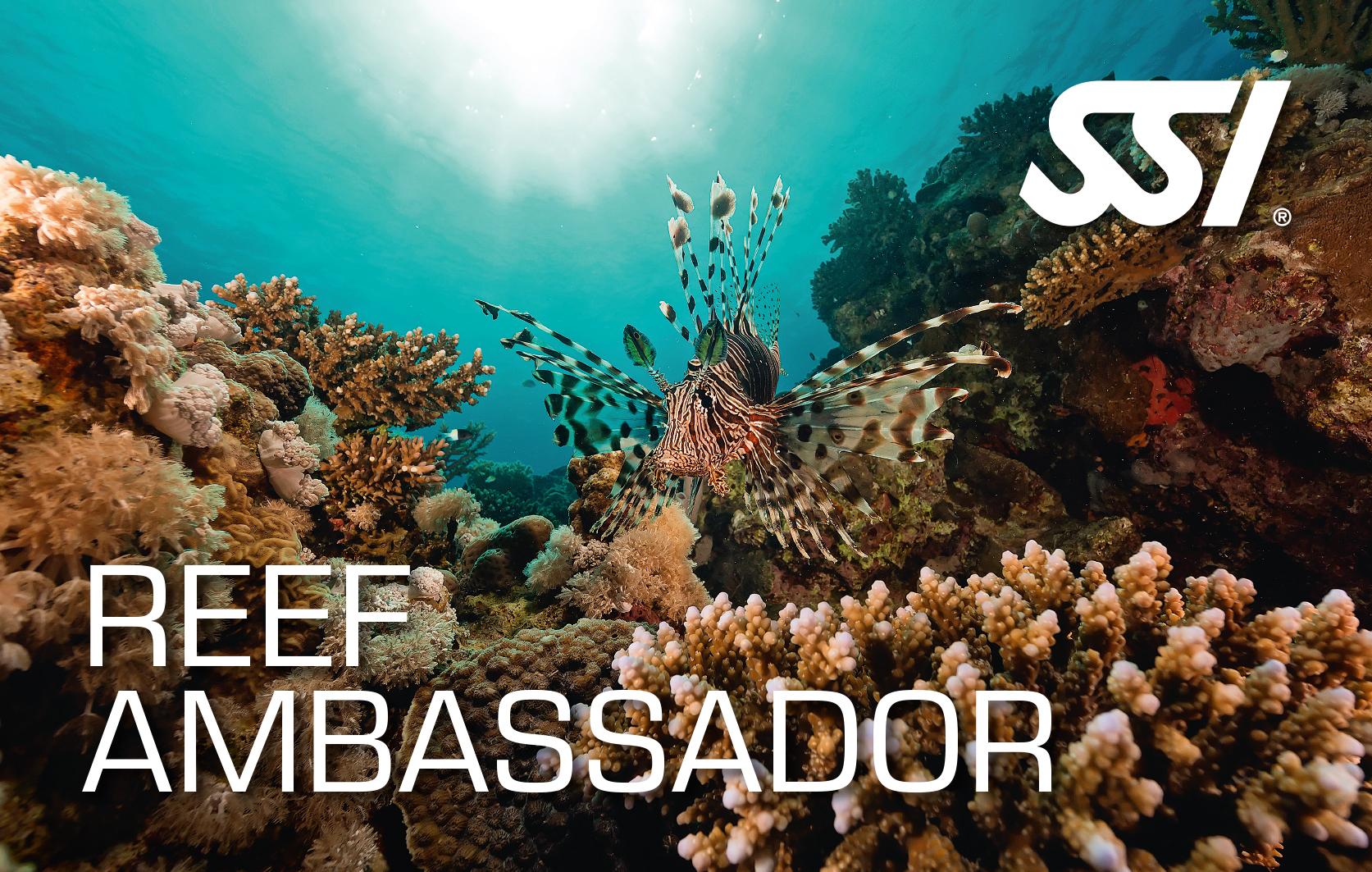 SSI Reef Ambassador