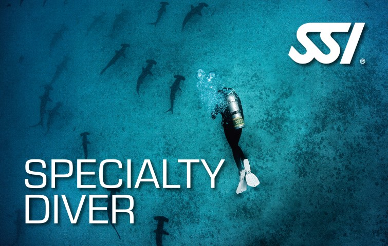 SSI Specialty Classes