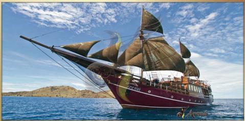 Dive Komodo aboard the Arenui