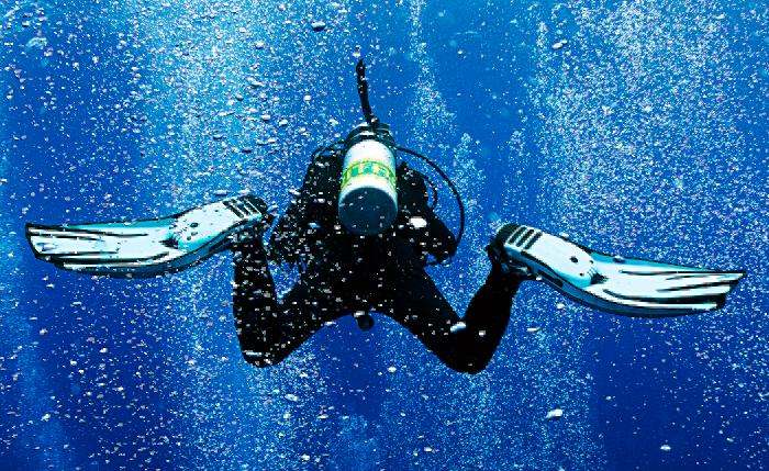 PADI Enriched Air Diver – Nitrox - no date