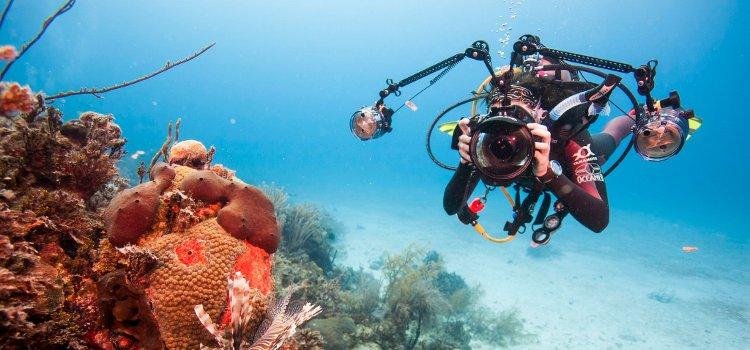 Digital Underwater Photography Level 1