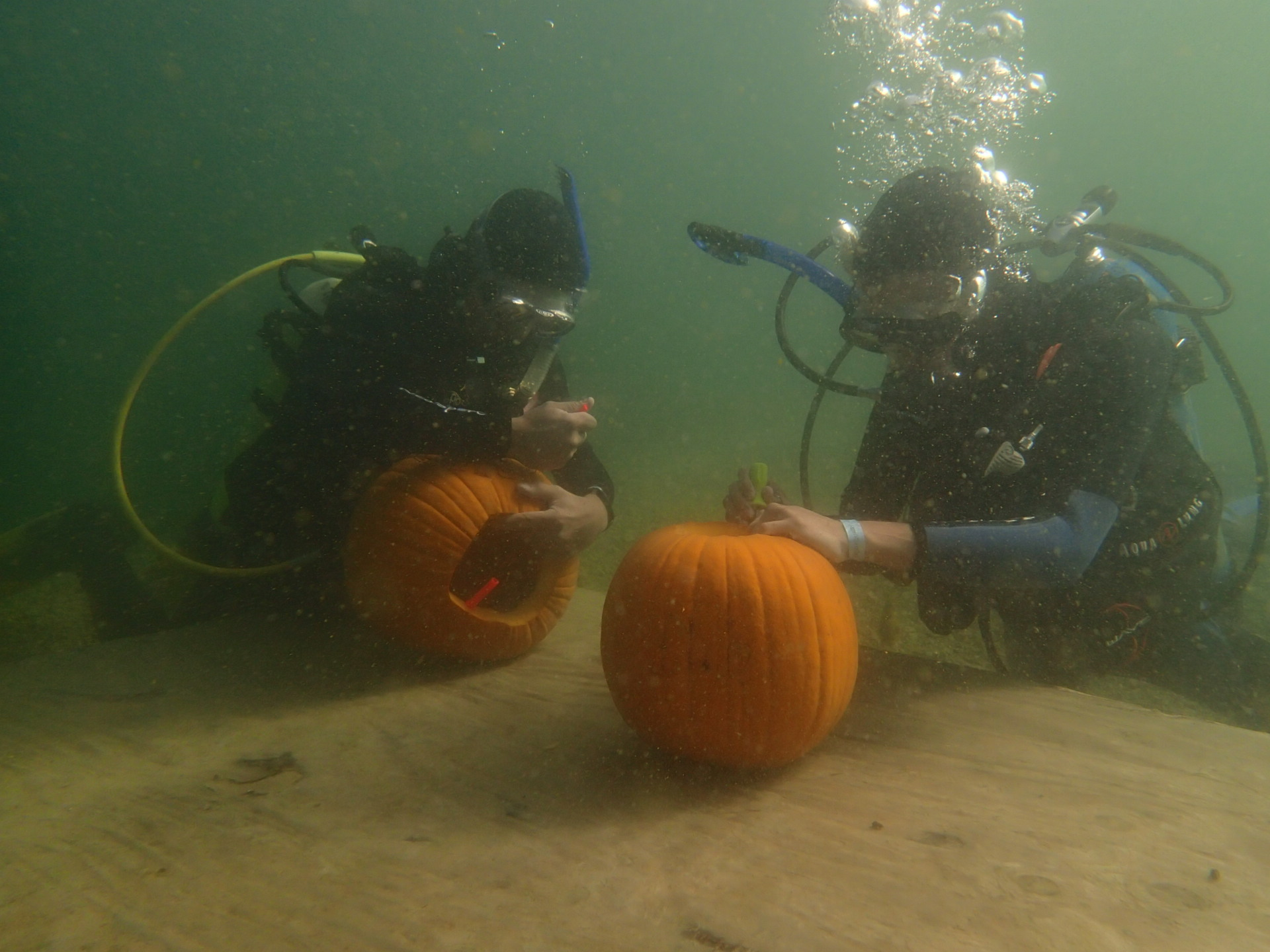 Underwater Pumpkin Carver