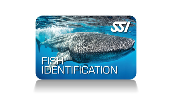 SSI Fish Identification