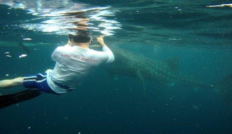 Atlantis Resorts, Philippines - July 30 - August 12, 2022