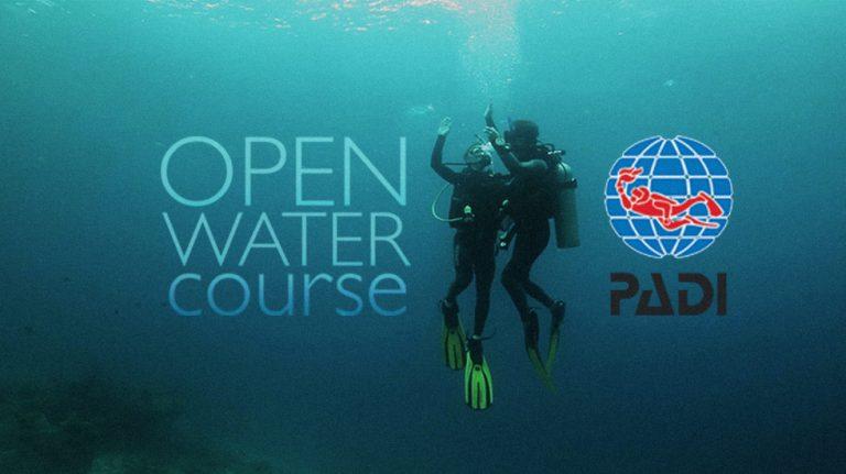 PADI Open Water Diver - Checkout Dives
