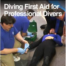 Diving First Aid for Professional Divers (DFAPro)