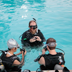 Open Water Diver - Richmond Hill