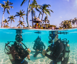 Your Crystal-Clear, Warm-Water, Tropical Destination Referral Course