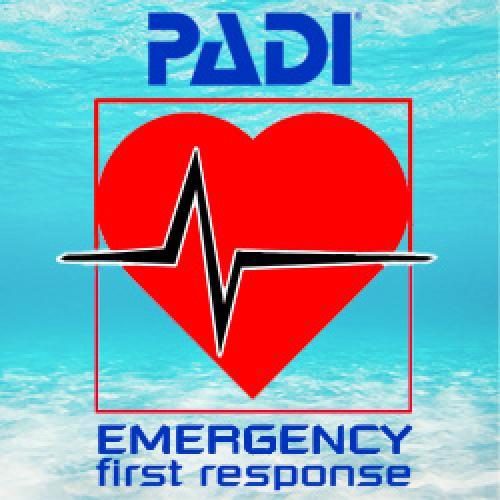 Emergency First Responder