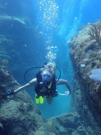 Referral Diver