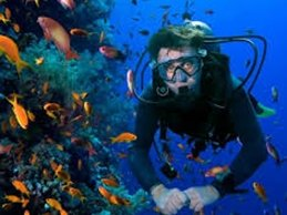 Open Water Diver - Transfer / Referral