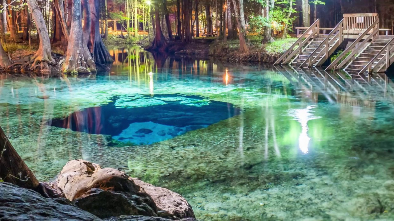 Tour - Ginnie Springs Dive Master Led 1 Tank Dive