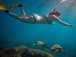 Snorkeling 1 - Pool