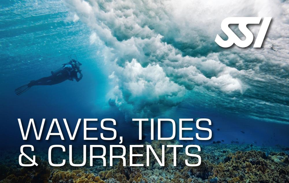 Waves, Tides and Currents
