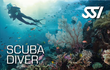 Scuba Diver Program