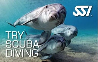 Try Scuba Program