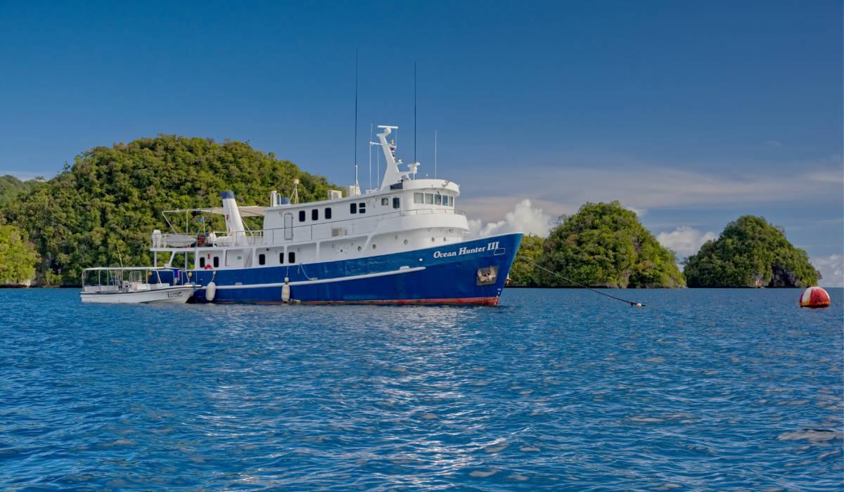 Dive Palau 2022