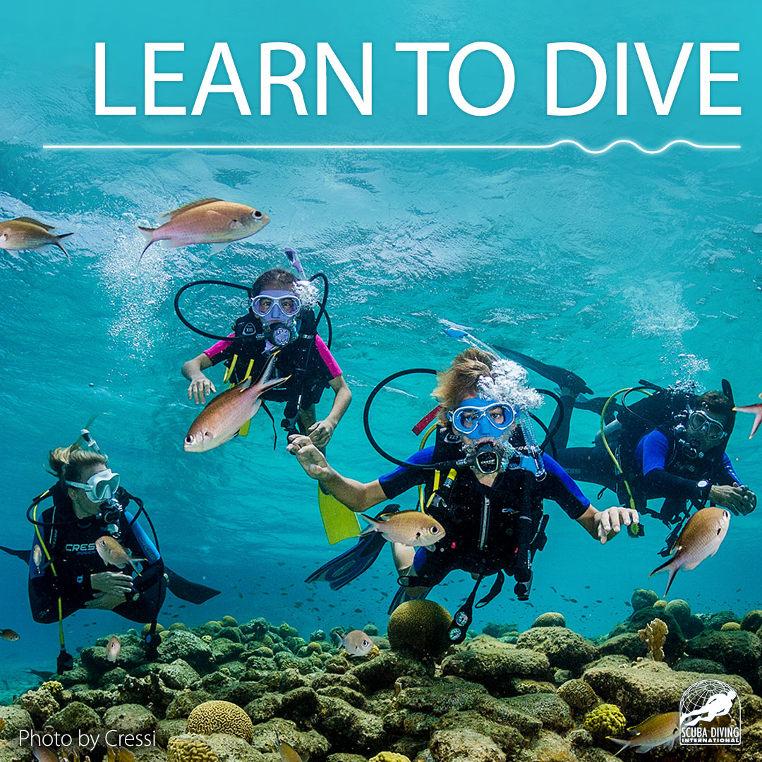 Scuba Diving Open Water Lessons and Certifications, Dallas, TX