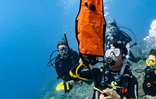 Delayed Surface Marker Buoy (DSMB) Diver