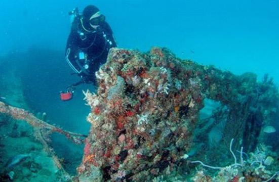 Grenada - True Blue Resort