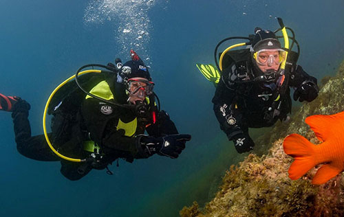 Rebreather Courses