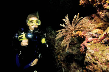 Marine Ecosystems Awareness Night - Limited Visibility Diver