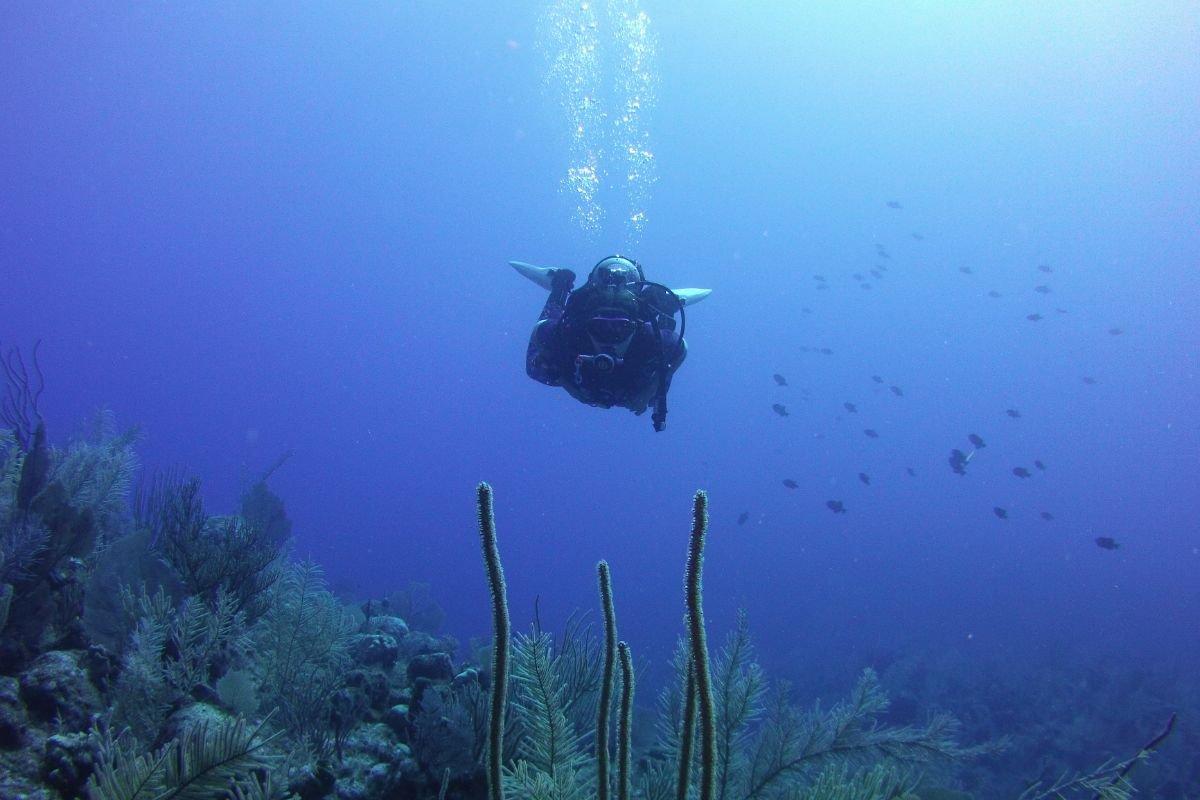 Advanced Diver/Rec 2